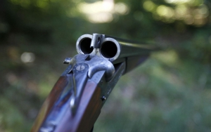 6456684_fusil-chasse_300x188